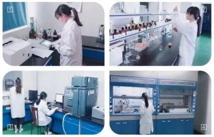 华阳制药:注射剂和固体制剂CMO领域的一枝新秀